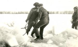 Pulling ice blocks