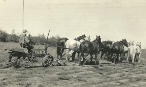 Breaking the virgin prairie 1927
